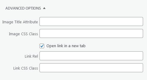 WordPress - Post - Image_Details - Advanced Options
