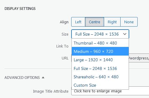 Screenshot WordPress - Post - Image Details - Display Settings - Size